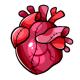 Anatomical Heart Plushie