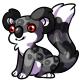 Black Koa
