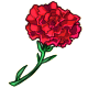 Giant Red Carnation