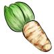 Giant Chicory