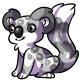 Grey Koa