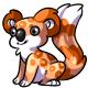 Orange Koa