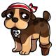 Pirate Baxter
