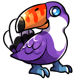 Purple Cantoo