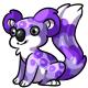 Purple Koa