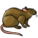 Rat Plushie