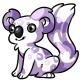 White Koa