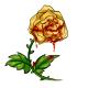 Bloody Yellow Rose