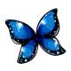 blue_morpho_butterfly_wings.png