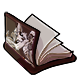 Harpy Book