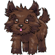 Brown Toto