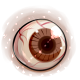 Brown Eye Pearl