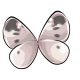 cabbage_White_butterfly_wings.png
