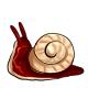 Cherry Gummy Snail