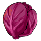 Giant Red Cabbage