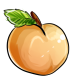 Giant Apricot