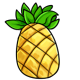 Giant Pineapple