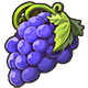 Giant Purple Grapes