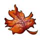 Orange Maple Leaf Candy