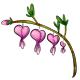 Pink Bleeding Heart