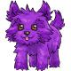 Purple Toto