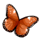 queen_butterfly_wings.png