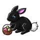 Black Shnuggle