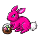 Pink Shnuggle